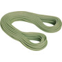 Mammut 10.0 Galaxy Classic Rope 60m violet-lime green