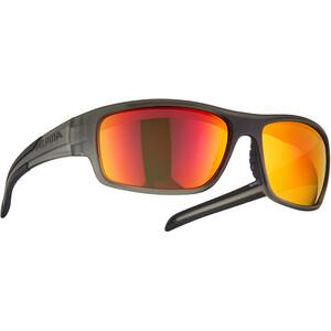 Alpina Testido Brille grau/transparent grau/transparent