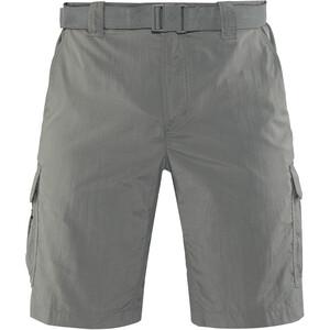 Columbia Silver Ridge II Cargo Shorts Herren grau grau