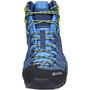SALEWA Alp Trainer Mid GTX Shoes Herr dark denim/cactus