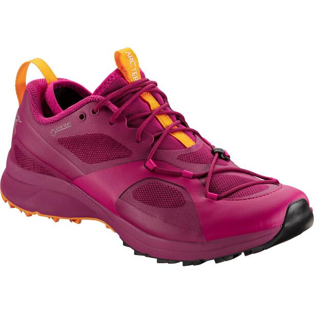 Arc'teryx Norvan VT GTX Shoes Dam liberty/arcturus