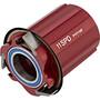 Zipp Freilauf Kit für 188 Nabe V8/V9 - SRAM/Shimano 11-fach