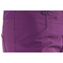 Patagonia RPS Rock Pants Dam geode purple
