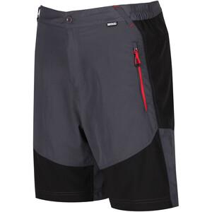 Regatta Sungari Shorts Herren seal grey/black seal grey/black