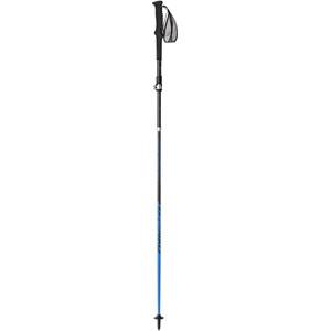 Dynafit Ultra Pro Pole Grå/Svart Grå/Svart
