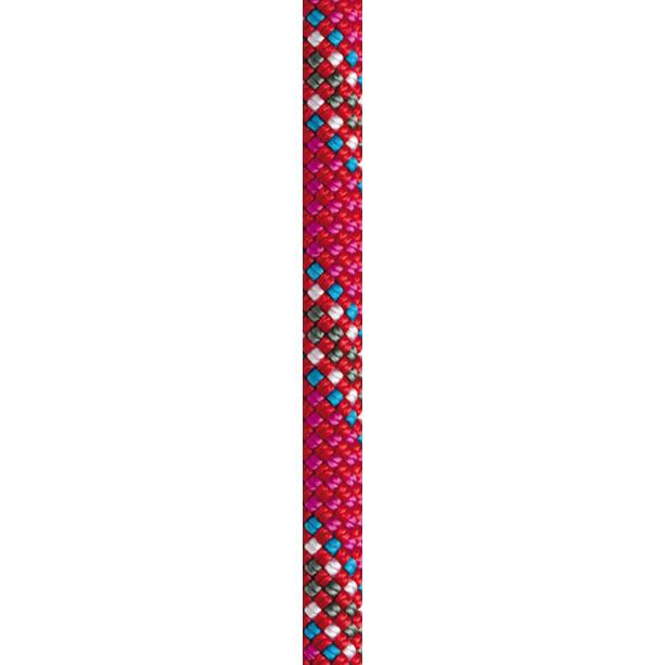 Beal Apollo II Seil 11mm 50m red