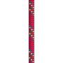 Beal Apollo II Seil 11mm x 50m red
