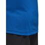 adidas TERREX Trace Rocker 1/2 Zip LS Shirt Herren blue beauty