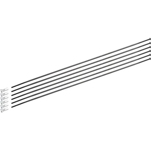 DT Swiss Speichenkit für ARC 1100 Dicut 80 mm
