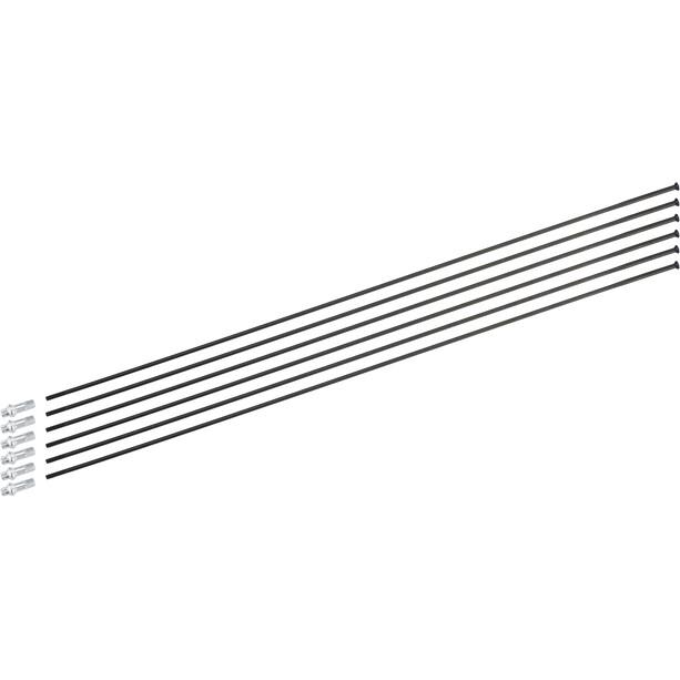 DT Swiss Spoke Kit pour HXC 1200 Spline 29