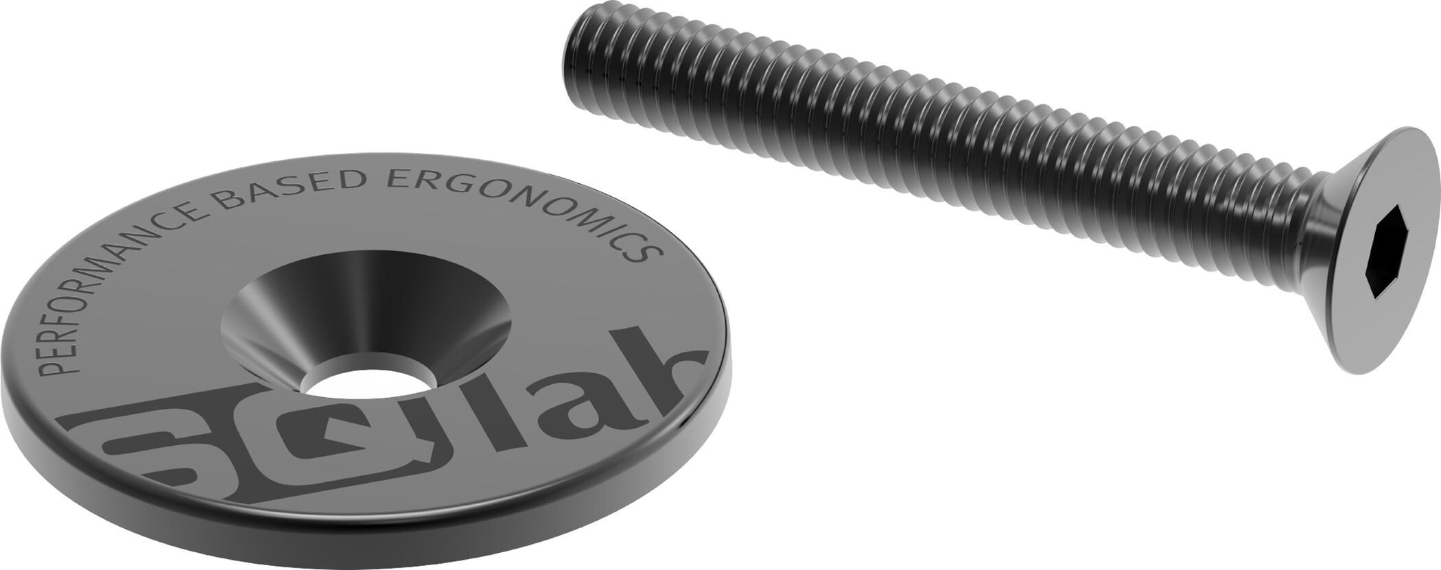 4 x DT Swiss Champion 130 mm 2,0//2,34 mm straight pull//J-Bend Black//Silver