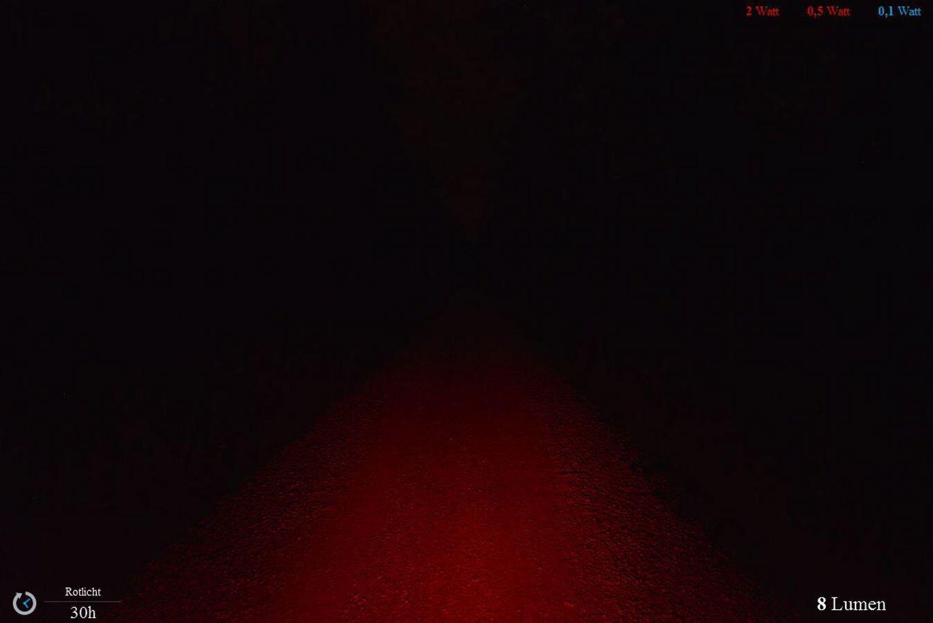 Lupine Rotlicht Rücklicht schwarzweiß