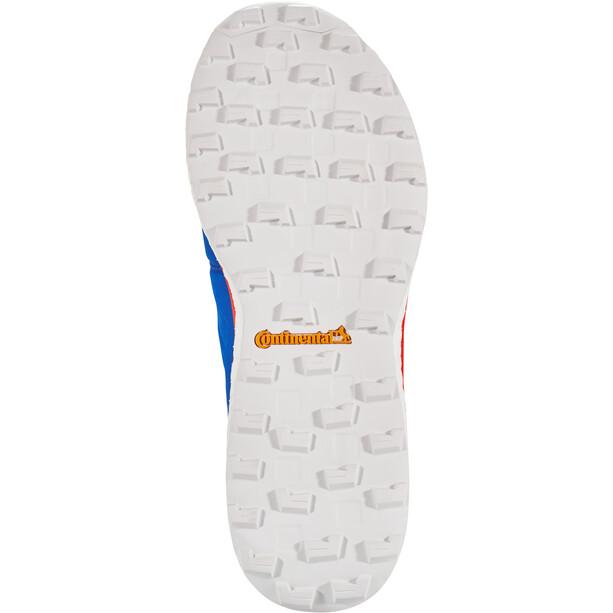 adidas TERREX Agravic Boa Schuhe Herren blue beauty/core black/active red