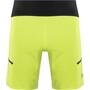 GORE WEAR R7 Shorts Herren citrus green/deep water blue