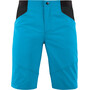 Cube Edge Lightweight Shorts Herren blau/schwarz