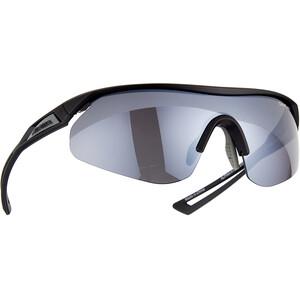 Alpina Nylos Shield Glasses svart svart