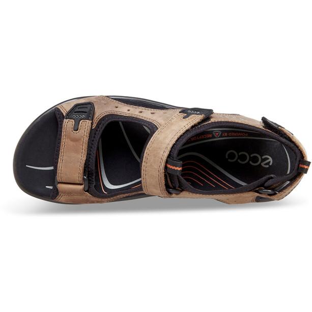 ECCO Andes II Sandalen Herren braun