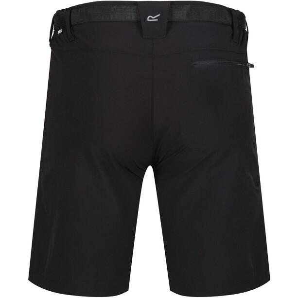 Regatta Xert II Stretch Shorts Herren black