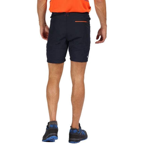Regatta Sungari Shorts Herren navy/navy