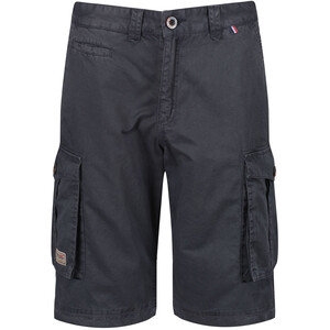 Regatta Shorebay Pantalones cortos Hombre, gris gris