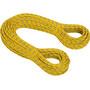 Mammut 8.0 Phoenix Dry Seil 70m yellow