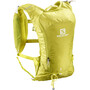 Salomon Agile 6 Set Rucksack citronelle/sulphur spring