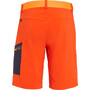 SALEWA Pedroc Cargo 2 Durastretch Shorts Herren dawn