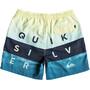 Quiksilver Word Block Volley 17 Boardshorts Herren southern ocean