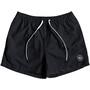 Quiksilver Everyday Volley 15 Boardshorts Herren black