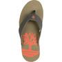 Timberland Wild Dunes sandaalit Miehet, vihreä