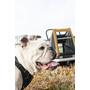 Croozer Dog Peppa Remorque pour chien, noir/jaune