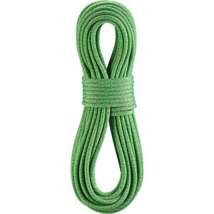 Edelrid Boa Gym Seil 9,8mm x 40m grün grün