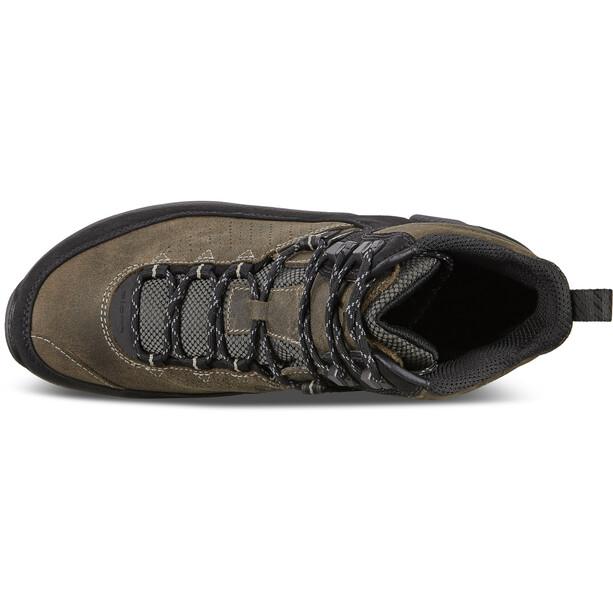 ECCO Biom Terrain Schuhe Herren black/tarmac