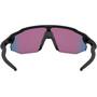 Oakley Radar EV Advancer Sonnenbrille schwarz/bunt