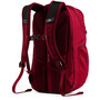 The North Face Jester Rucksack tnf dark grey heather/cardinal red