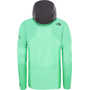 The North Face Brigandine Jacket Herr chlorophyll green fuse/weathered black fuse