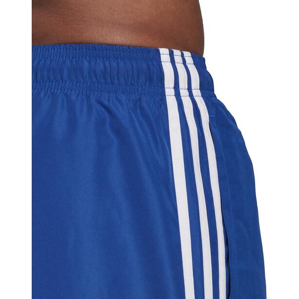 adidas 3-Stripes VSL Badeshorts Herren collegiate royal