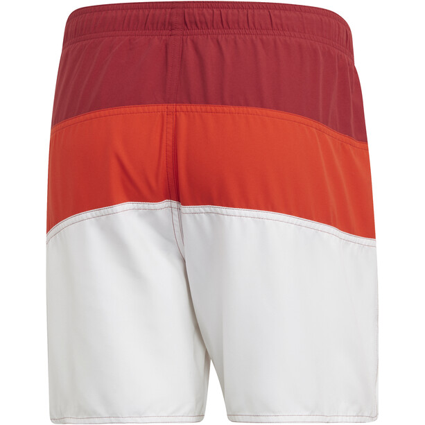 adidas Colourblock SL Badeshorts Herren active maroon/active orange