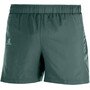 "Salomon Agile Shorts 5"" Herren green gab"