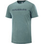 Salomon Agile Graphic Tee Men green gab